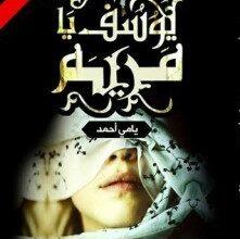 Photo of تحميل رواية يوسف يا مريم pdf – يامى أحمد