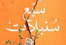 تحميل كتاب سبع سنبلات pdf – محمد إبراهيم