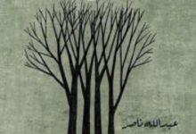 تحميل كتاب العالق في يوم أحد pdf – عبد الله ناصر