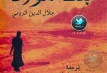 تحميل رواية بنت مولانا pdf – مورل مفروى