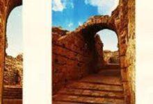 تحميل كتاب في غمار السياسة فكراً وممارسة pdf – المجلد الثانى
