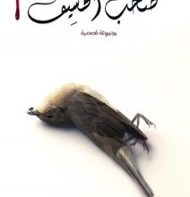 Photo of تحميل كتاب صخب الخسيف 2 الجزء الثاني pdf – أسامة المسلم