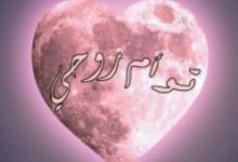 تحميل رواية توأم روحى pdf – أمل بركات