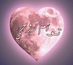 Photo of تحميل رواية توأم روحى pdf – أمل بركات