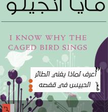 Photo of تحميل قصيدة اعرف لماذا يغنى الطائر الحبيس في قفصه pdf – مايا أنجيلو
