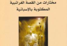 تحميل كتاب ظل ثقيل pdf – سيرجو غوت فيل هارتمان