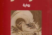 تحميل رواية دوائر pdf – أحمد الحقيل