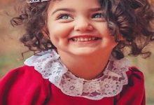 تحميل كتاب يوميات عائلة مفروسة pdf – أحمد إبراهيم