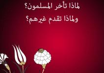 تحميل كتاب لماذا تأخر المسلمون؟ ولماذا تقدم غيرهم؟ pdf – شكيب أرسلان