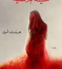 صورة تحميل رواية منينة بلانشيه pdf – محمد ولد أمين