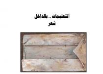 تحميل كتاب التعليمات بالداخل pdf – أشرف فياض