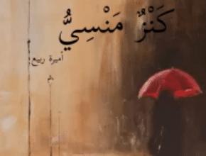 صورة تحميل كتاب كنز منسي pdf – أميرة ربيع