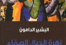 تحميل رواية زهرة الجبال الصماء pdf – البشير الدامون
