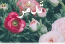 تحميل رواية تَدمُر pdf – نوران مجدي
