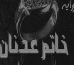 تحميل رواية خاتم عدنان pdf ــ محمود نوح زناتي