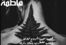 تحميل البكاء في محراب فاطمة pdf ــ محمد محي الدين ابو زكو