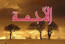 رواية الأجمة - حسن أوريد